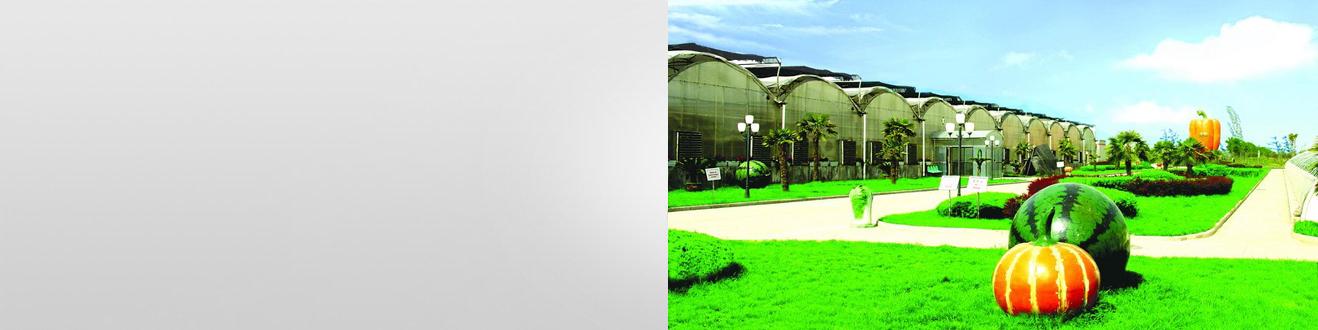 广州市风车园艺有限责任公司
